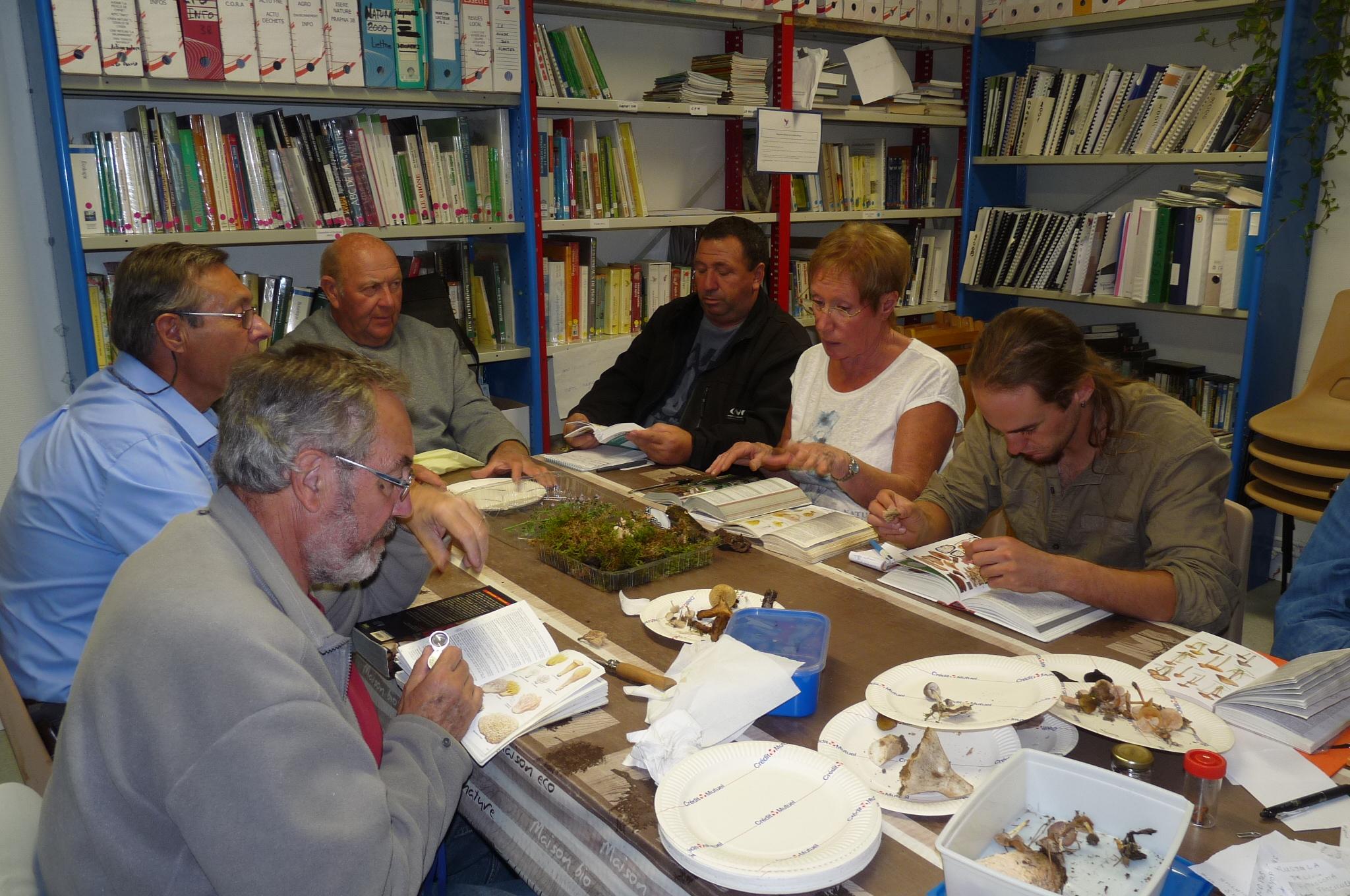 atelier_mycologique-Breuzard_Vincent (3)