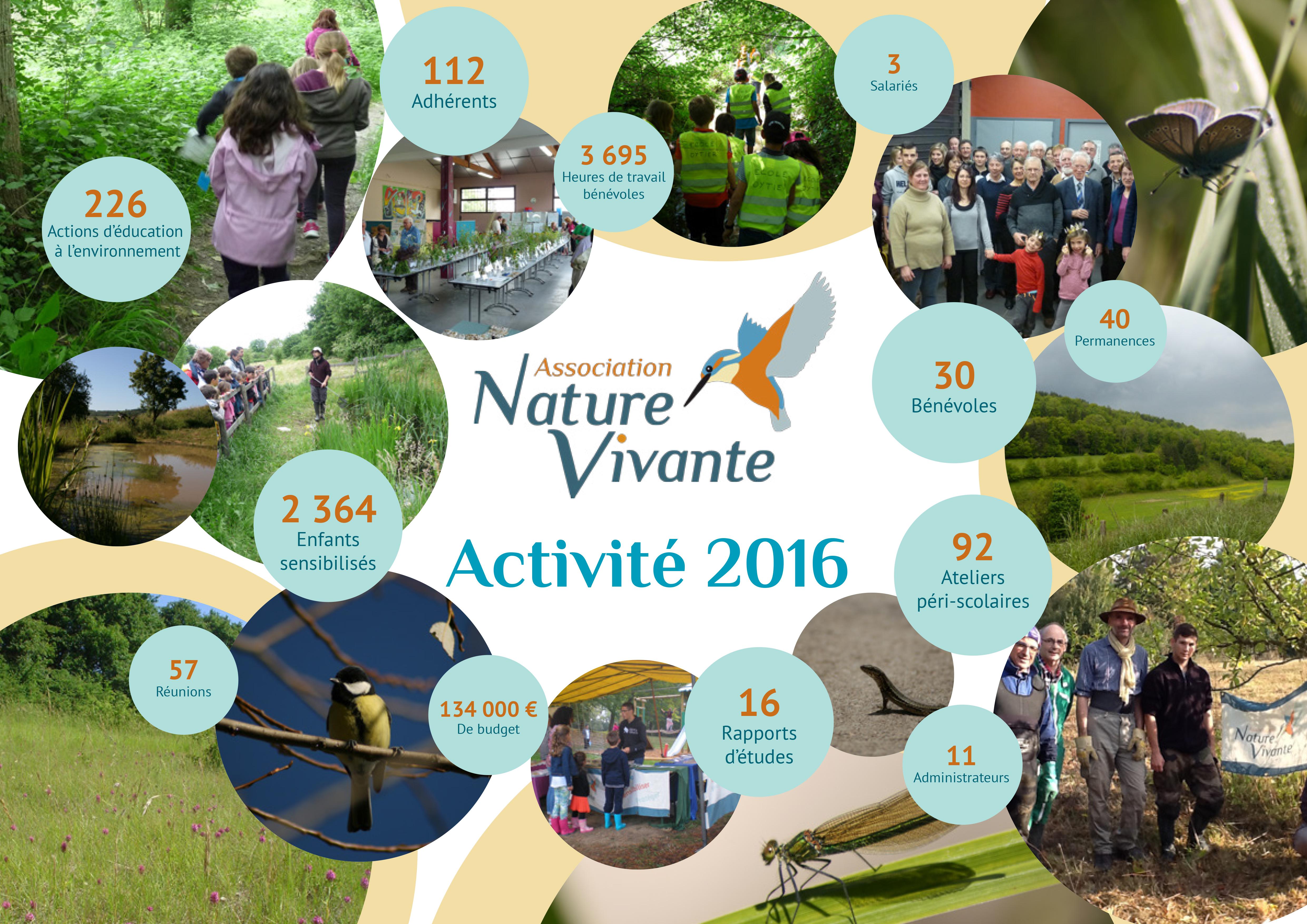 Rapport d'activité 2016 (synthèse)