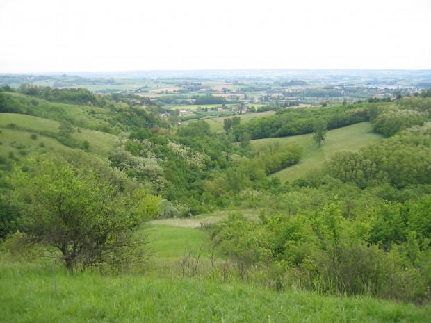 paysage du territoire
