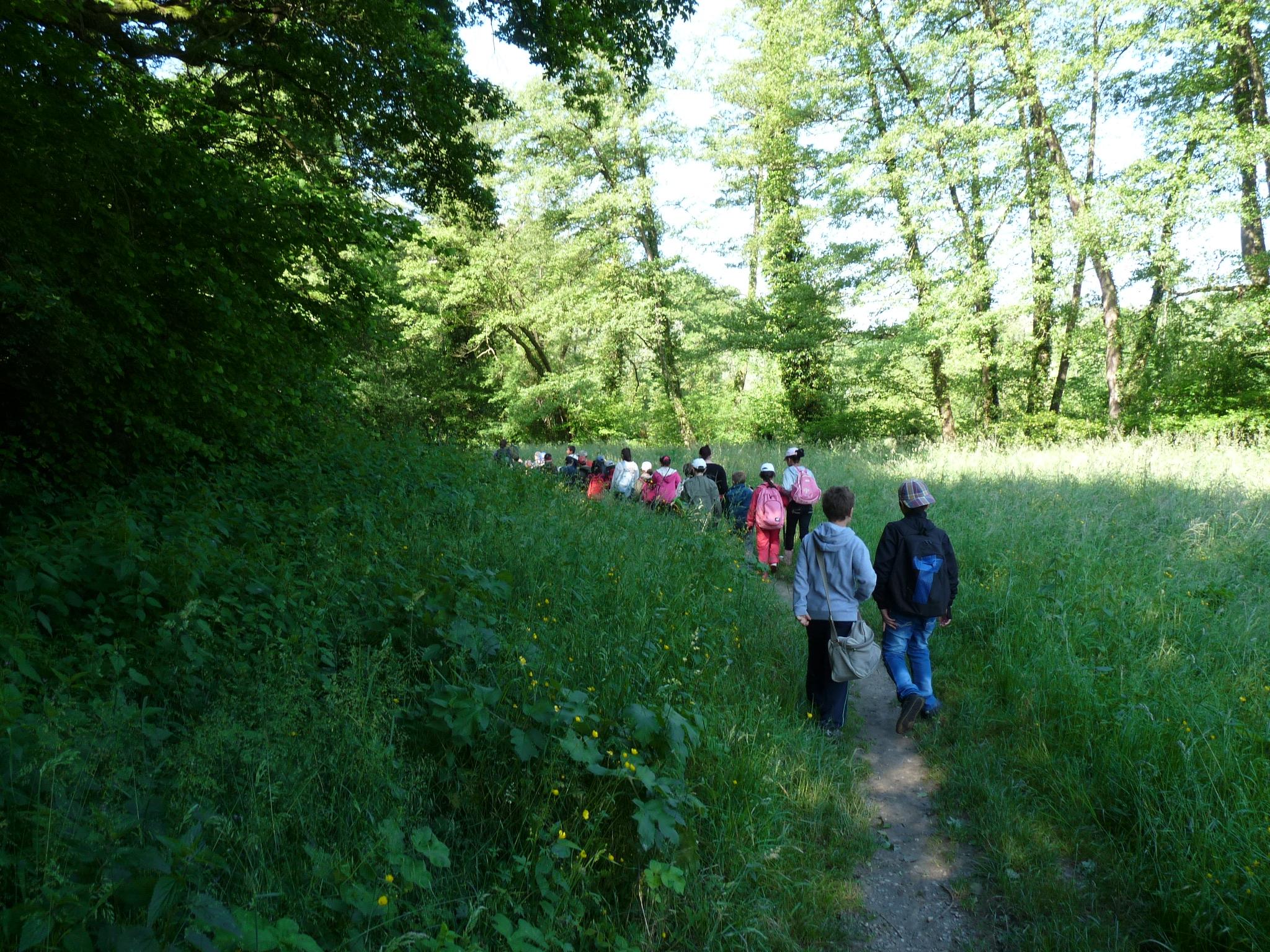 Campagne pédagogique : Quand la nature se déplace en Bievre Valloire