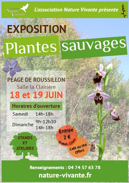 Exposition plantes sauvages