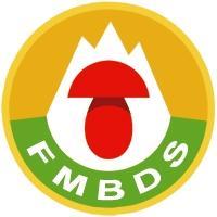 fmbds