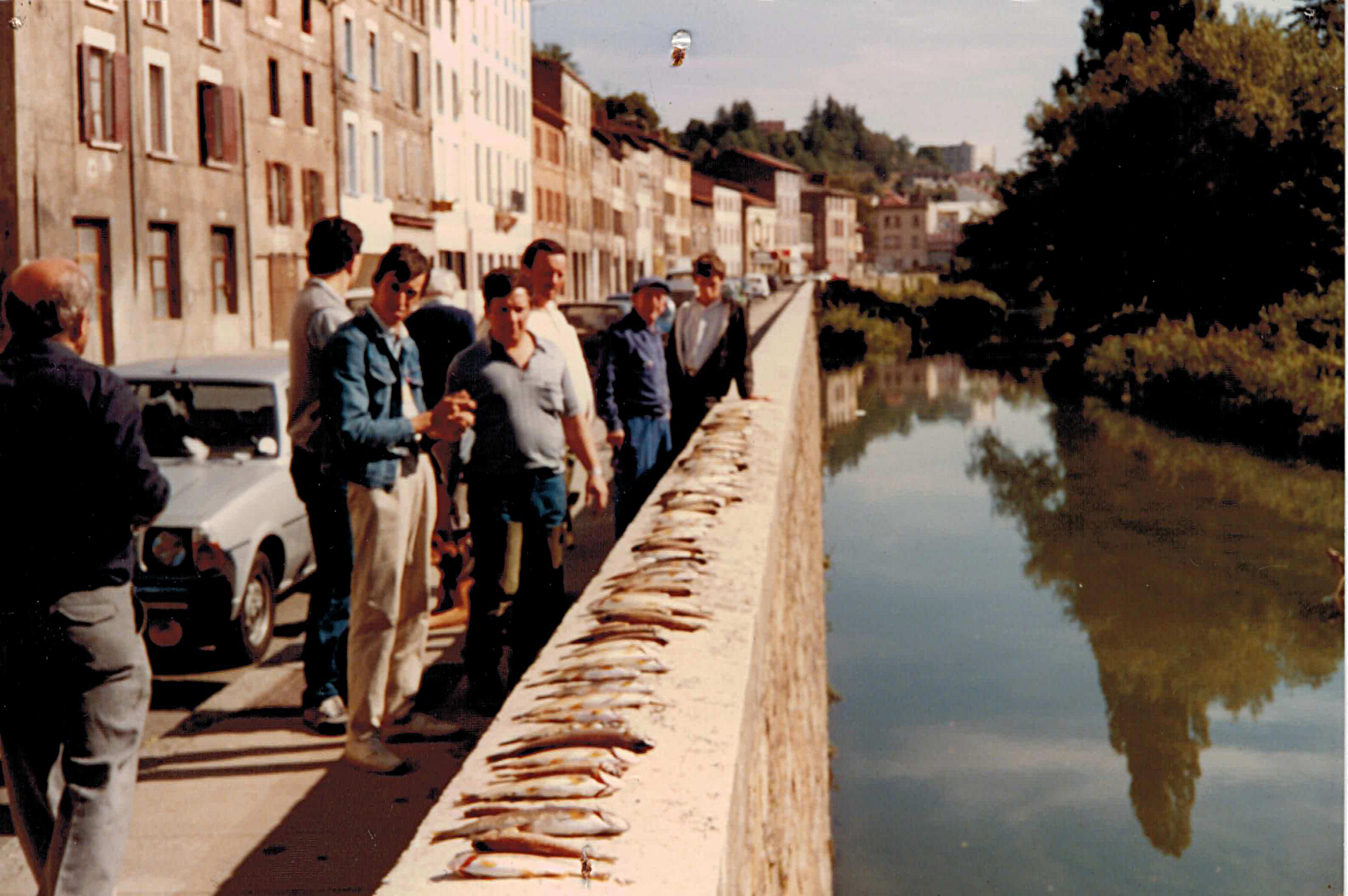 Poissons morts 1985 (2)