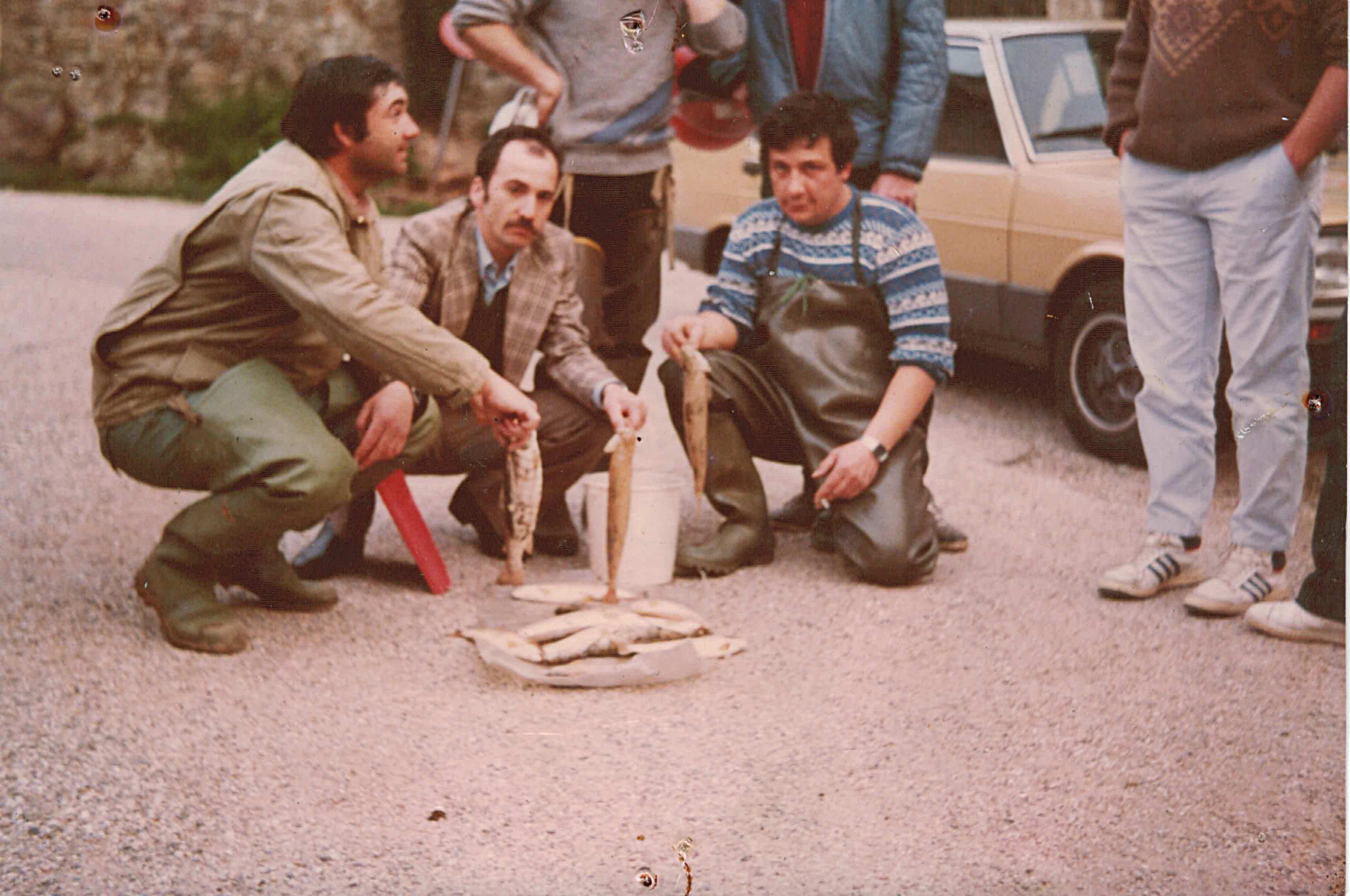 Poissons morts avril 1984